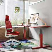 Migration_Steelcase_Antunez-3